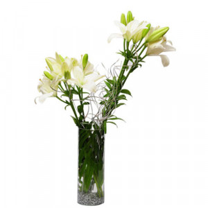 Sweet memories - Send Lilies Online India