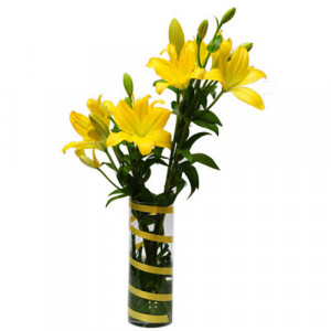Sunshine Flower - Glass Vase Arrangements
