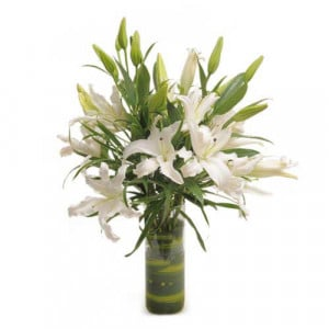 Isle Of White - Glass Vase Arrangements