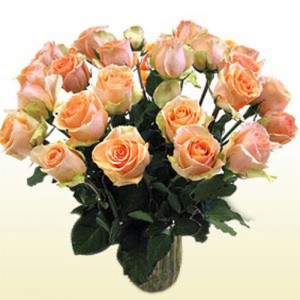 24 Versilia Roses (Peach) - Glass Vase Arrangements