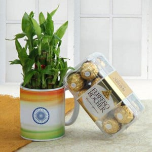 Living Indian Combo - Send Flowers and Chocolates Online