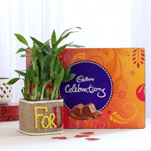 2 Layer Lucky Bamboo In For U Vase With Cadbury Celebrations - Mothers Day Gifts Online