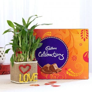 2 Layer Lucky Bamboo In Love Vase With Cadbury Celebrations - Send Diwali Plants Online