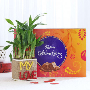 2 Layer Lucky Bamboo In My Love Vase With Cadbury Celebrations - Send Diwali Plants Online