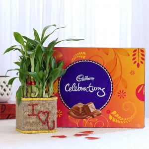 2 Layer Lucky Bamboo In I Love U Glass Vase With Cadbury Celebrations - Send Diwali Plants Online