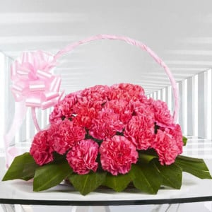 Memorable Moments 20 Pink Carnations Online - Online Flowers Delivery In Pinjore