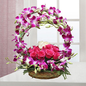 Best wishes - Buy Orchids Online in India