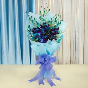 Bunch Of 6 Orchids - Flower Delivery in Bangalore | Send Flowers to Bangalore