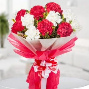 6 Red & 6 White Carnations - Rose Day Gifts Online