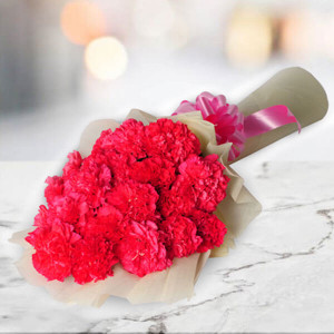 A Big Hug 20 Pink Carnations Online - Send Valentine Gifts for Her