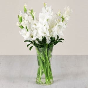 Summer Fresh 10 White Glades Online - Glass Vase Arrangements