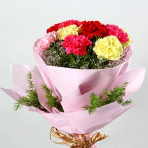 Multicolored Carnations - Online Flower Delivery in Karnal