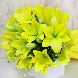 Green Light For Love 6 Yellow Lilies Online - Send Midnight Delivery Gifts Online
