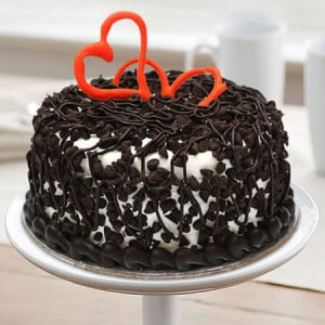 Chocolate Chip Cake Half Kg - Online Cake Delivery in Faridabad