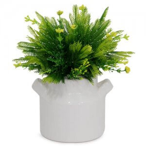 Beautiful Green Arrangement - Online Gifts