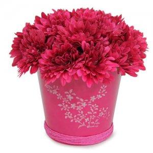 Beautiful Pink Arrangement - Online Gifts