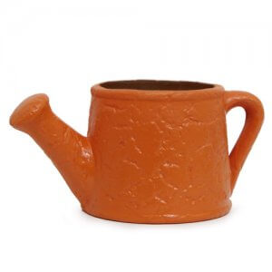 Watering Can Planter - Online Gifts