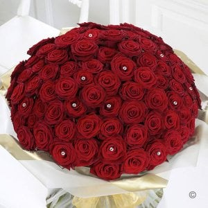 Romantic Tickle 100 Red Roses Bunch - Send Valentine Gifts for Him Online