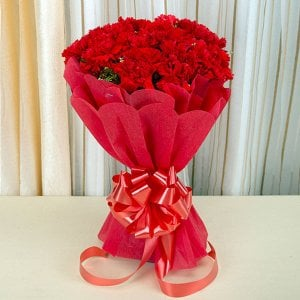 Carnival 20 Red Carnations Online - Send Carnations Flowers Online