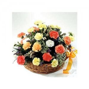 A Bundle Of Happiness 20 Carnations Online from Way2flowers