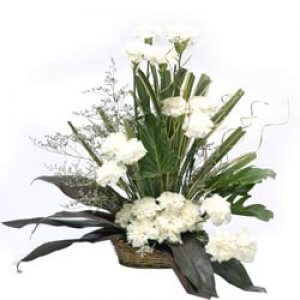 Cool Classic 20 White Carnations - Send Carnations Flowers Online