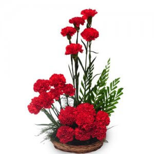 Passionate Love 20 Red Carnations - Send Carnations Flowers Online