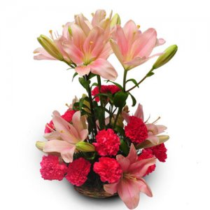 Perfect pink - Send Carnations Flowers Online