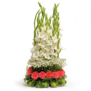 The Precious Heart - Send Carnations Flowers Online