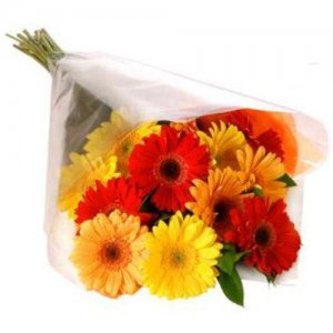 Bunch Of Mixed Gerbera - Online Flower Delivery in India - Flower Bouquet Online