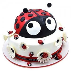 Lady Bird Cake - Birthday Cake Online Delivery - Online Cake Delivery in India