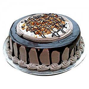 Chocolate Nova 1kg - Birthday Cake Online Delivery