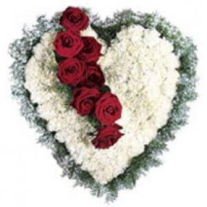 Heart Carnations   -   Online Gift Shop