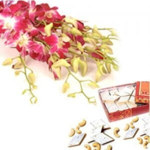 Warm N Best Wishes - Buy Orchids Online in India