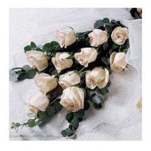 Thoughtful Sentiments  -  Online Flower Delivery in India