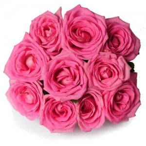 Perfect Love 10 Pink Roses Online from Way2flowers