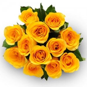 Eternal Purity 12 Yellow Roses - Send Flowers to Balanagar | Online Cake Delivery in Balanagar