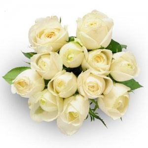 Always And Forever 12 White Roses Online from Way2flowers