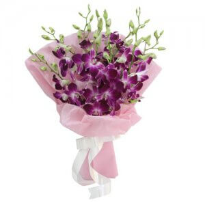 Exotic Beauty 9 Purple Orchids - Send Valentine Gifts for Him Online