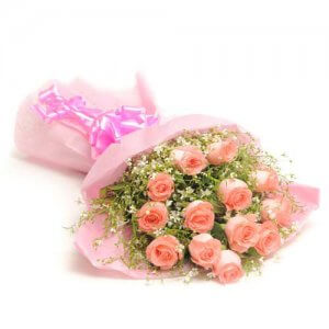 Fresh Blush 12 Pink Roses Online from Way2flowers