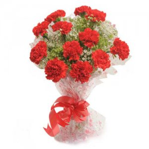 Delight 12 Red Carnations - Flower Bouquet Online