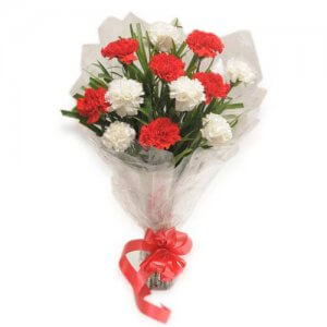 Dual Delight - Send Carnations Flowers Online