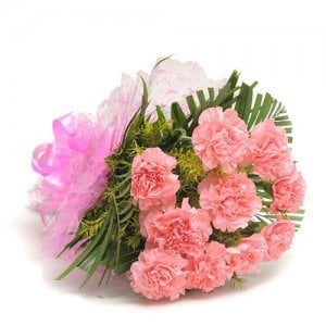 12 Pink Carnations Online from Way2flowers - Online Flowers Delivery in Panchkula