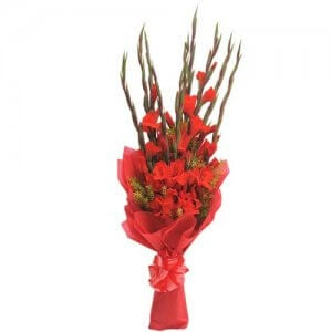 10 Red Glads - Flower Bouquet Online