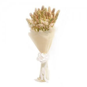 20 Tube White Roses - Birthday Gifts for Him
