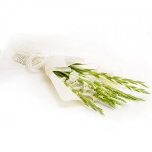 10 White Glads - Flower Bouquet Online