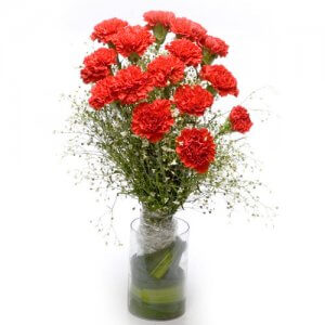 Red Sky N You - Send Carnations Flowers Online