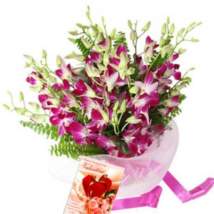 Exotic Expression - Buy Orchids Online in India