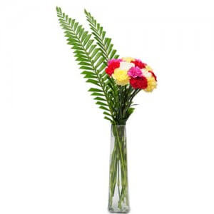 Best wishes arrangement - Send Carnations Flowers Online
