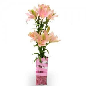 Thinking of you - Online Gift Shop India - Glass Vase Arrangements