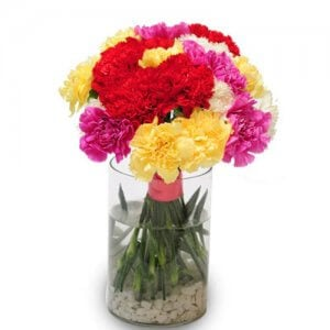 Sweet Carnations - Glass Vase Arrangements